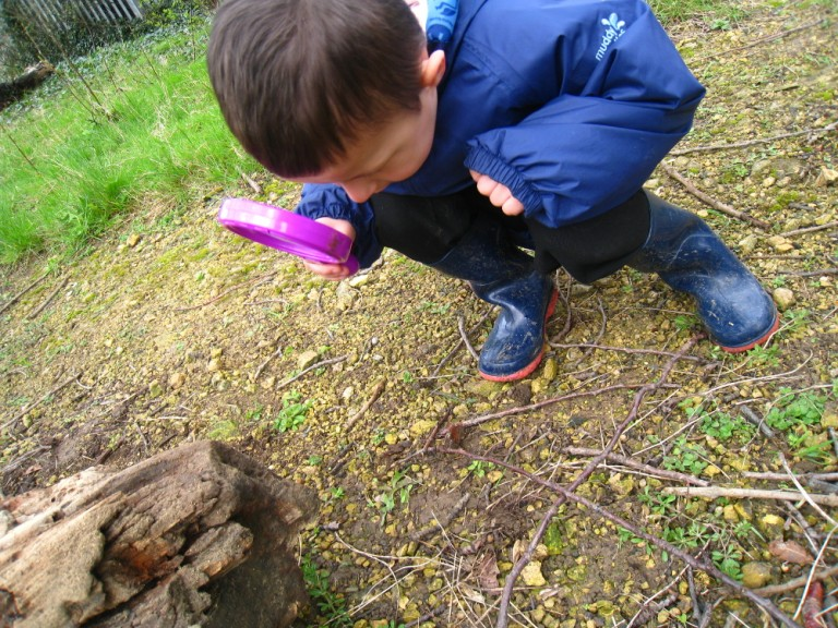 A child searching the wildlife garden