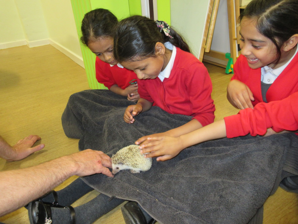 Year 2 children meet some animals
