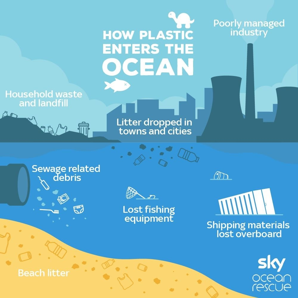 How Plastic Enters the Ocean