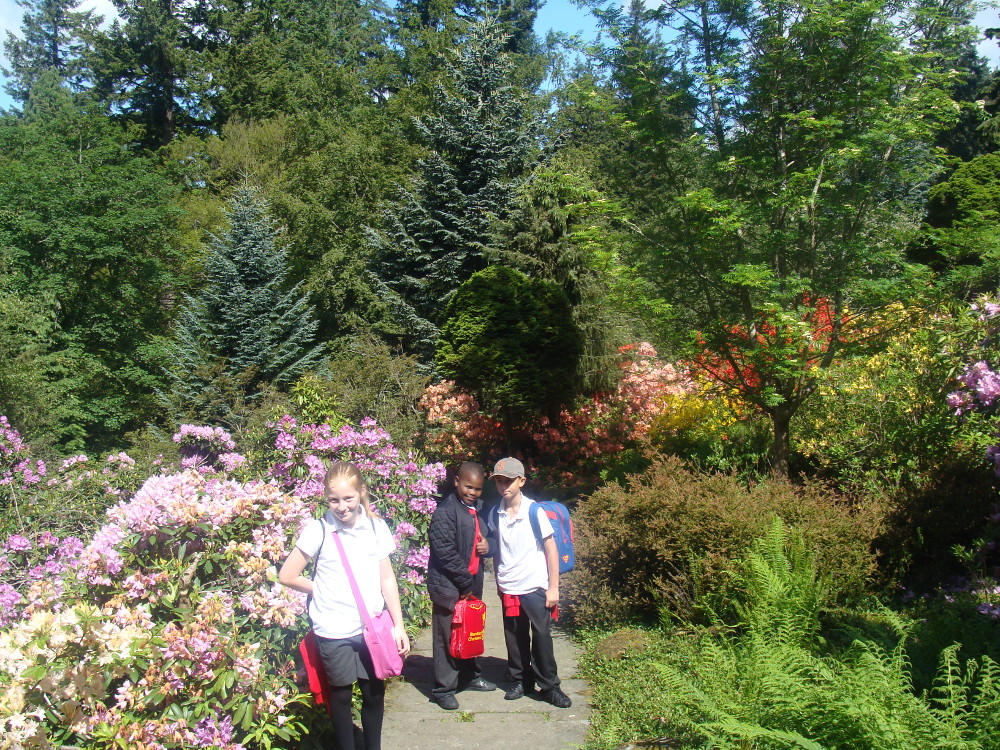 Children exploring the grounds of Cragside