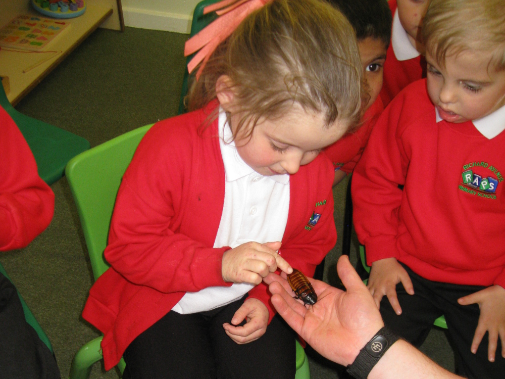 The children with one of the many insects brought in.