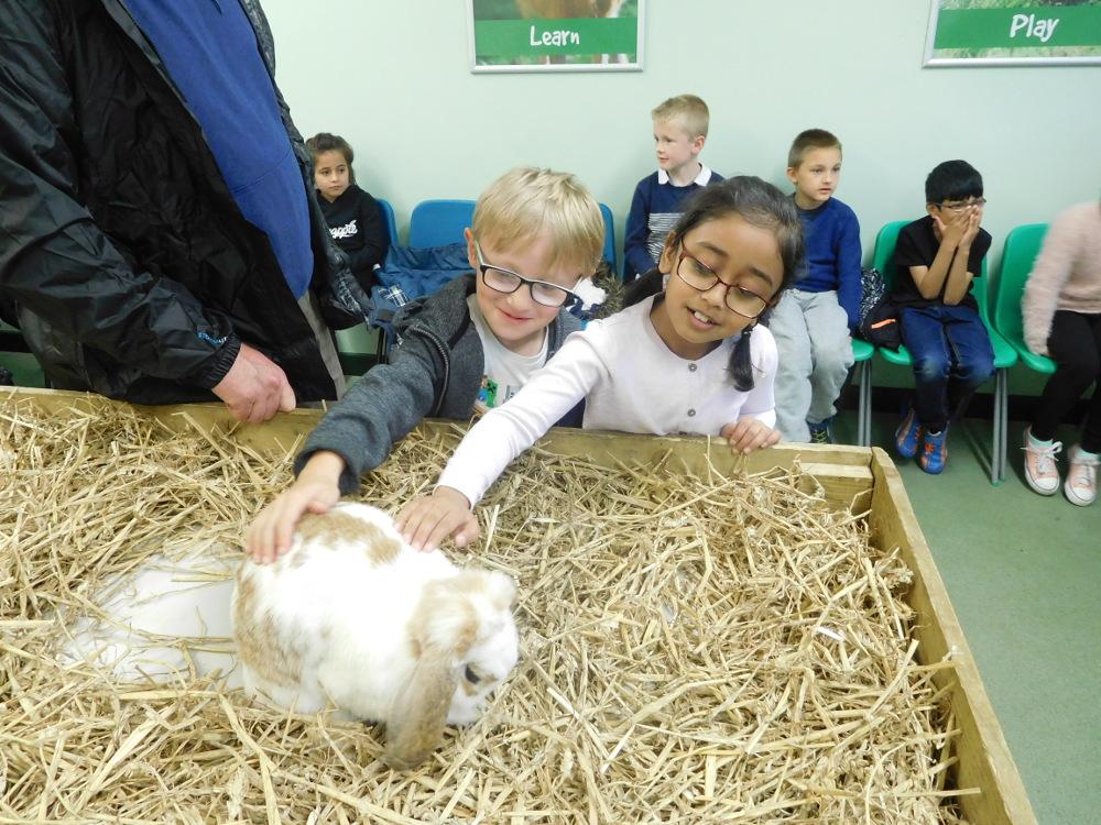 Animals of Kirkley Hall