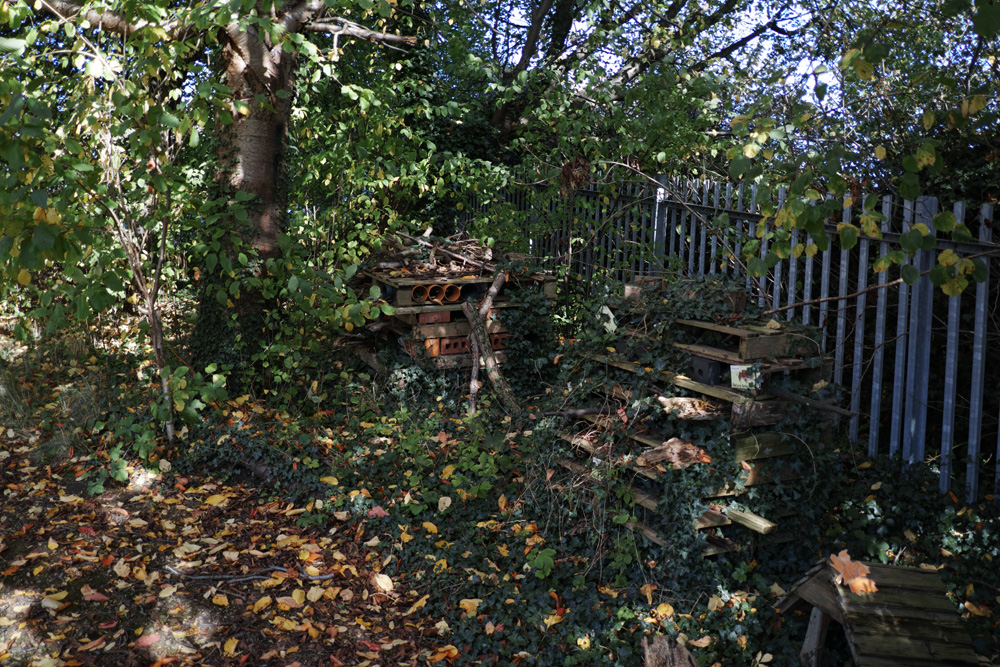 The Bug Hotels