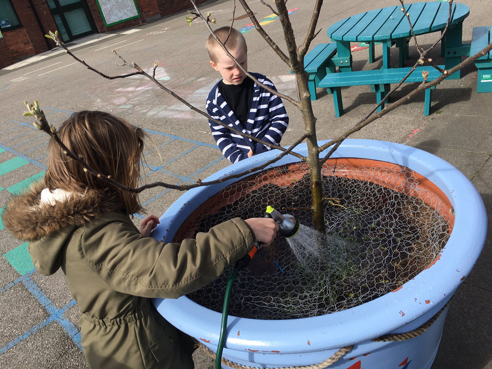 The children watering plants and gardening around the school grounds